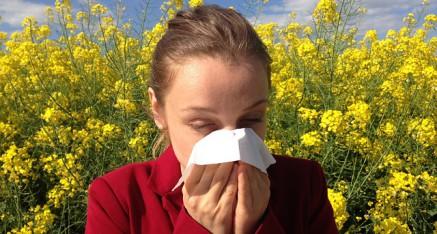 Was kann bei Allergien helfen?